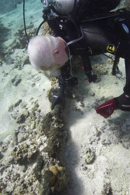 Maritime archaeologist inspects concreted iron artefact on site.
