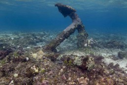 Underwater view of anchor in the picked-in orientation.