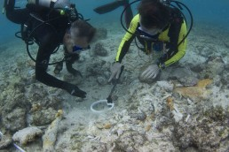 Divers undertake an underwater search with a handheld magnetometer.