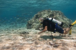 Diver conducting an underwater metal detector search.