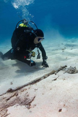 Diver inspecting partially exposed timber section on sandy bottom.