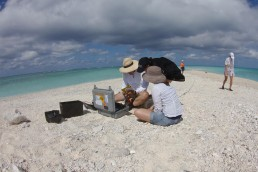 Survey team sets up equipment on sand cay.