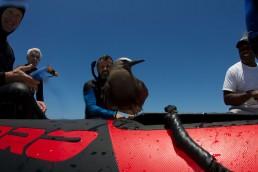 Maritime archaeologist, James Hunter, with sea bird.