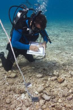 Maritime archaeologist , James Hunter, records an artefact on site.