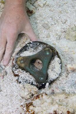 Copper alloy pulley coak found on site.