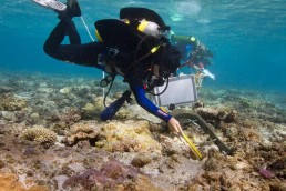Divers record one of the rudder pintles on the wreck site.
