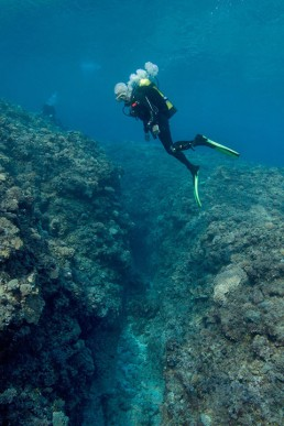 Maritime archaeologist , Kieran Hosty, conducts a visual survey of a reef groove.