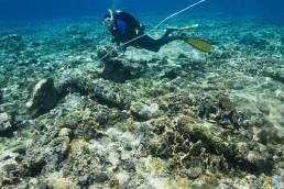 Maritime archaeolgist, Paul Hundley, investigates anchor found on site.