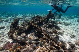 Maritime archaeologist, Irini Malliaros, records an anchor on one of the wreck sites at Kenn Reefs. Image: Julia Sumerling for Silentworld Foundation, 2017.