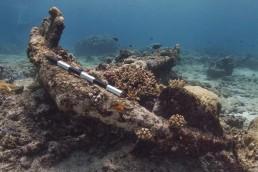 Anchor at Ashmore Reef