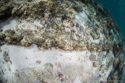 The run of iron chain found on Boot Reef.