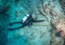Maritime archaeologist Kieran Hosty investigates a second anchor found in deep water at Boot Reef.